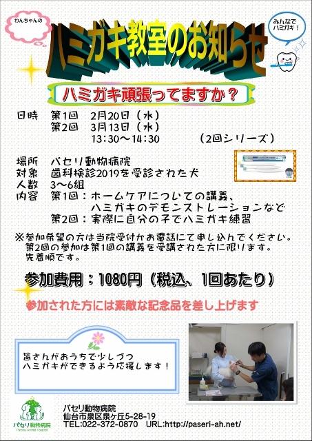 IMG-5435 (453x640)