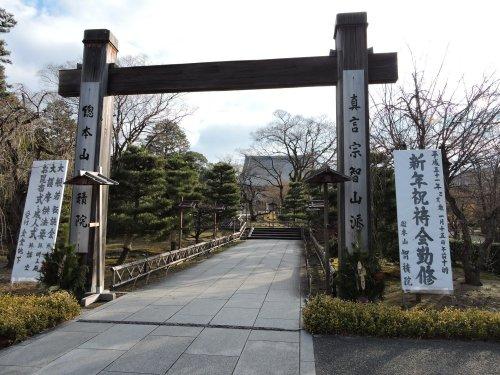 19年1月京都11