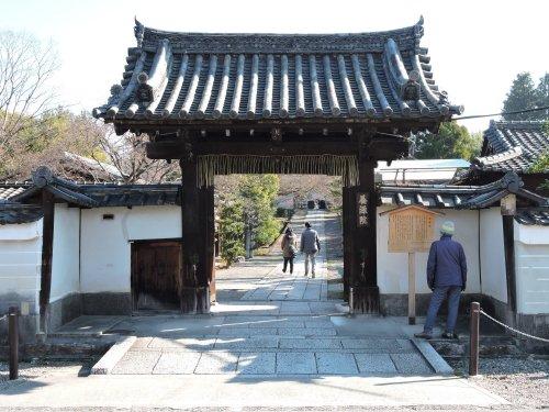 19年1月京都19