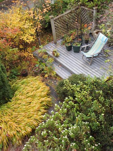 my-garden 025 (2)