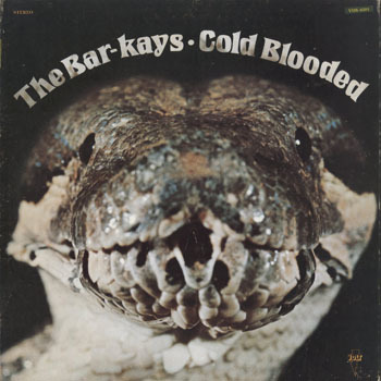 SL_BAR KAYS_COLD BLOODED_20181110