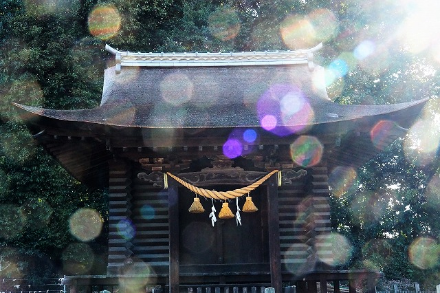 多家神社4