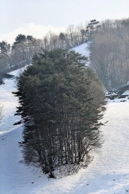 芸北冬11