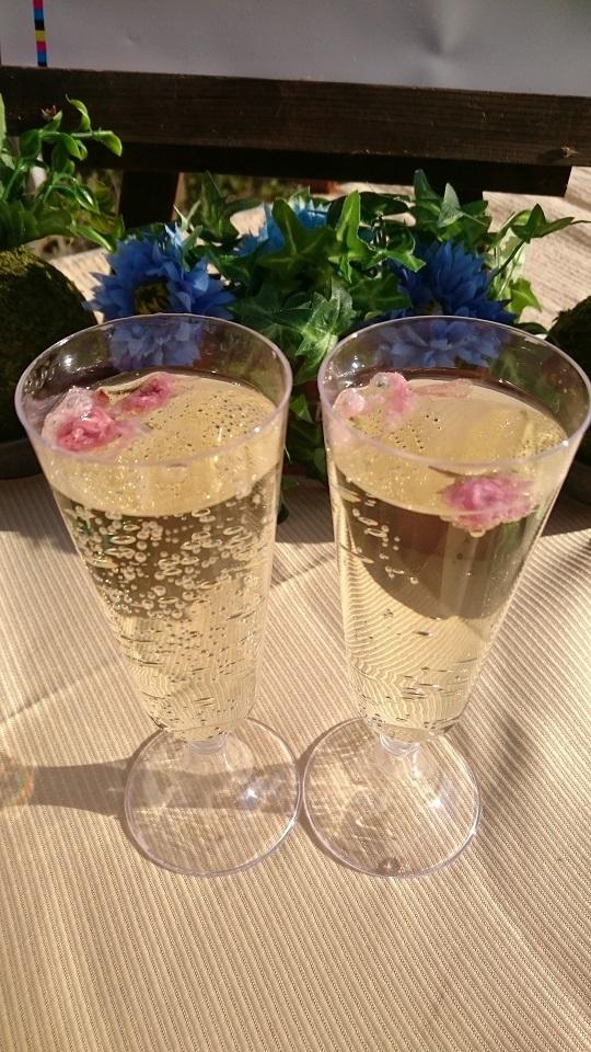 桜のシャンパン2