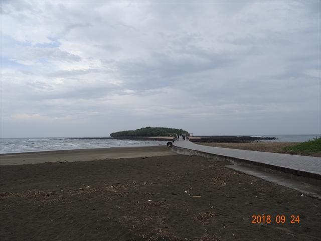 DSC04597.jpg