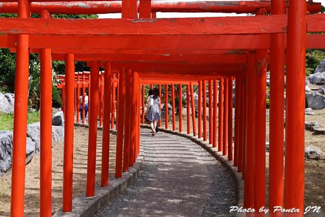 takayamainari18-013.jpg