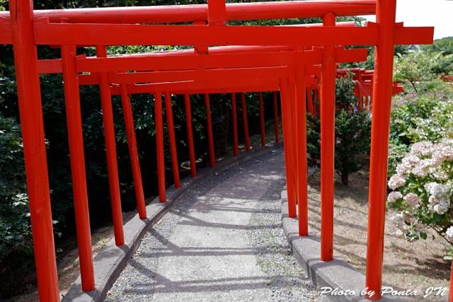 takayamainari18-022.jpg