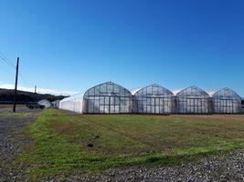 【写真】今年最後の草刈りを終えた農園北側駐車場近くの様子
