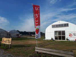 【写真】受付ハウス前に掲げた店頭販売の目印である赤いノボリ