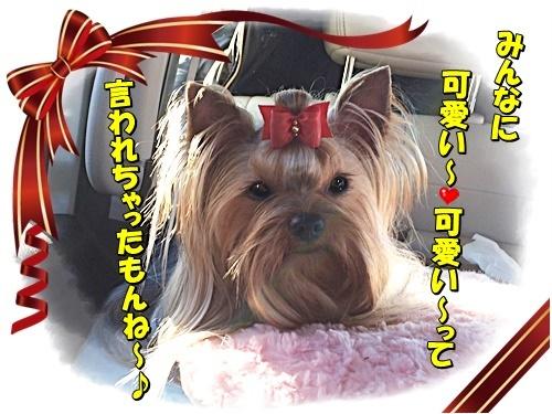 a nikkougawa5