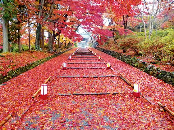 kyoto_pic18.jpg