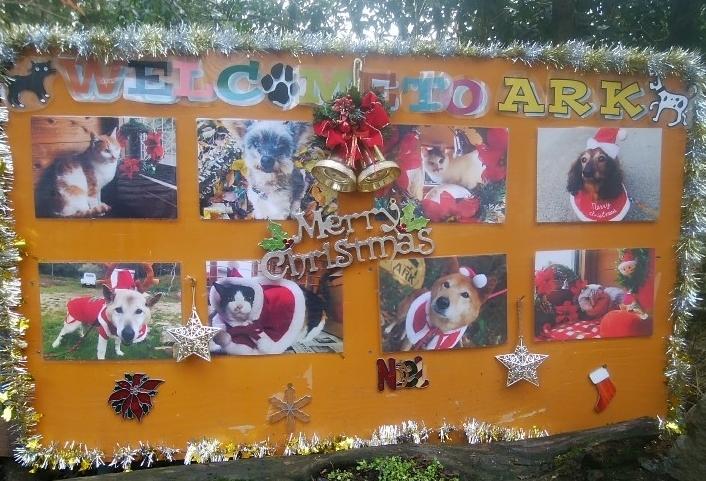 アグネス、アークさんの入り口の写真もクリスマスバージョンになっていました