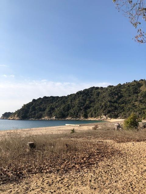 入浜1 2019