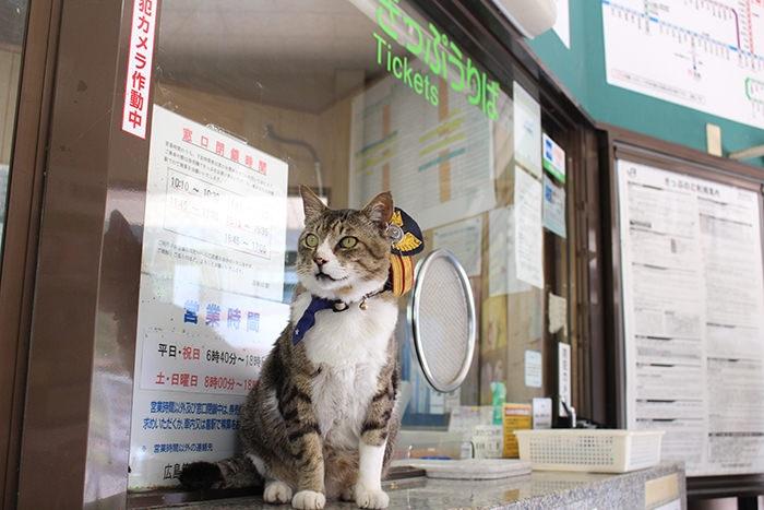 JR志和口駅の「りょうま駅長」4