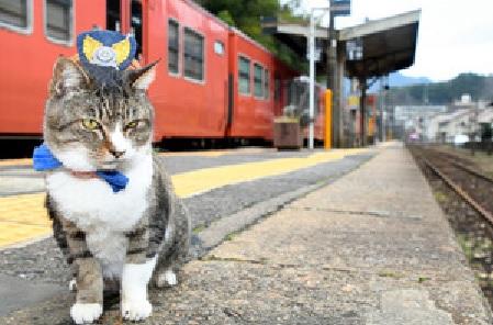 JR志和口駅の「りょうま駅長」13