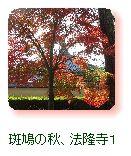 斑鳩の秋、法隆寺1