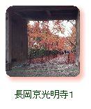 長岡京光明寺1