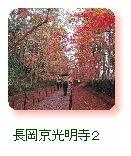 長岡京光明寺2