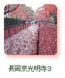 長岡京光明寺3