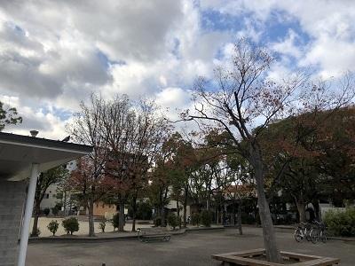 2018/11/23 (1)