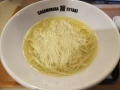 Sagamihara 欅-10