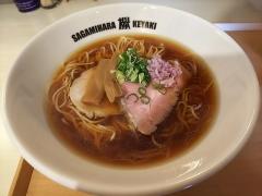 Sagamihara 欅-12