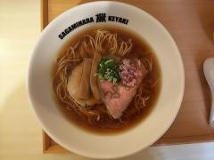 Sagamihara 欅-13