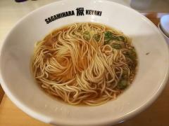 Sagamihara 欅-15