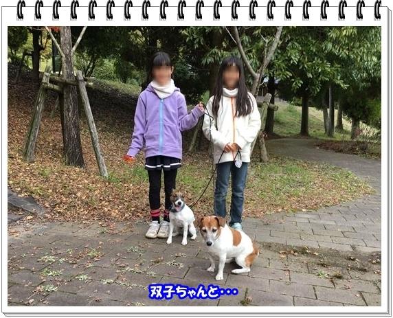 3383ブログNo5