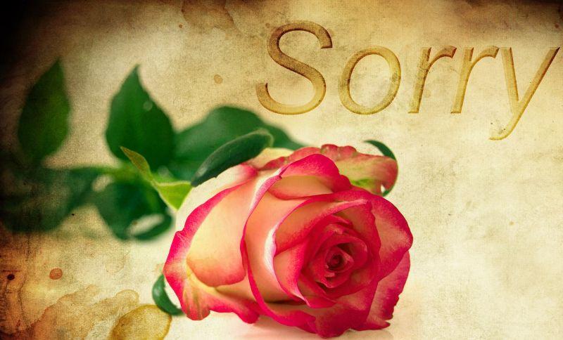 rose-1271216_800.jpg