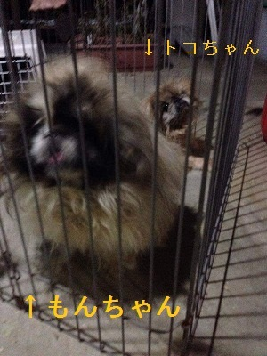 received_346897678831405.jpg