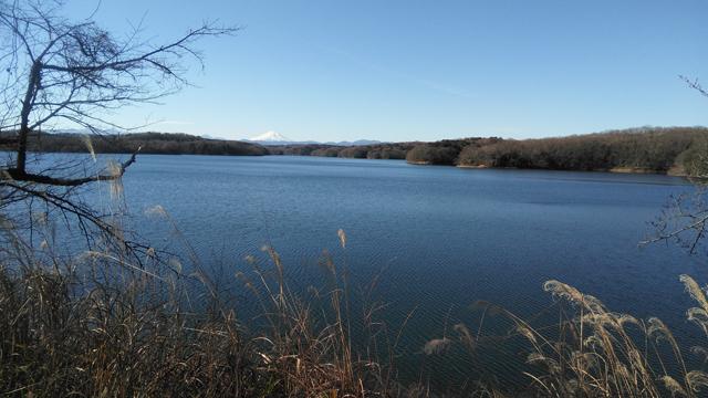 綺麗な狭山湖