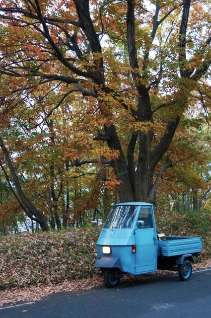 紅葉した木とベスパカー・アペ