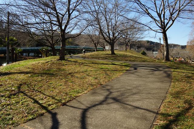 なだらかな公園を楽しむ