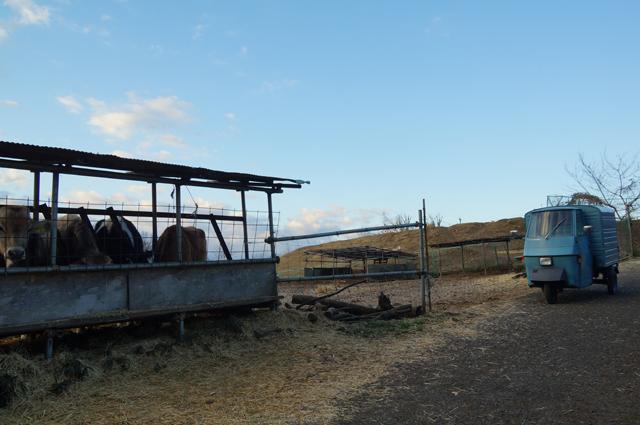 磯沼牧場とピアジオベスパカー