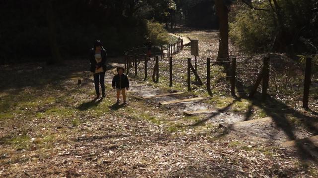 小山田緑地の階段を登ります