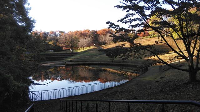 栃谷戸公園の池