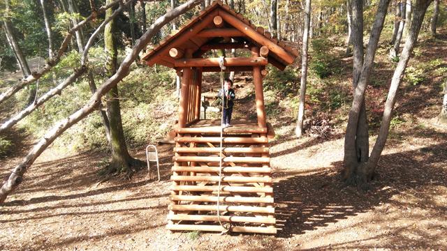 丸太の小屋に登った