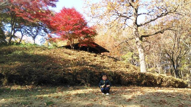 多摩丘陵の紅葉をバックに