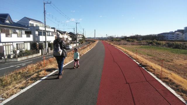 浅川の土手を歩く