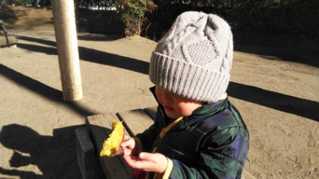 中央公園で焼き芋