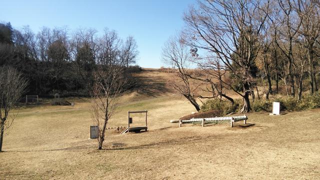 小山田緑地の素晴らしい丘