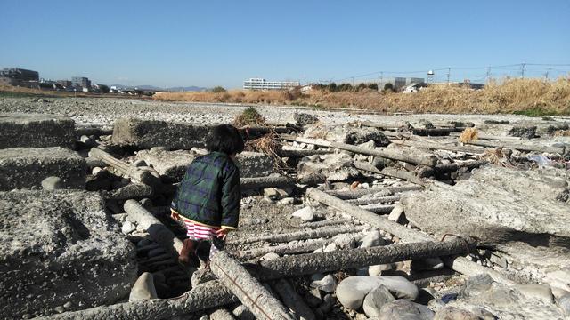 浅川の用水の堰