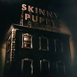 Skinny Puppy_The Process