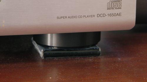 DSCN6649.jpg