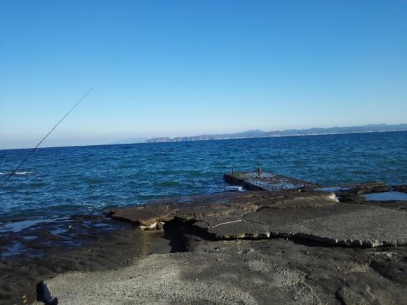 館山 房総 釣り 海 2018 旅行 堤防 ムラソイ 根魚