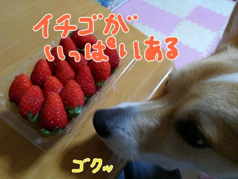 15498079360.jpeg