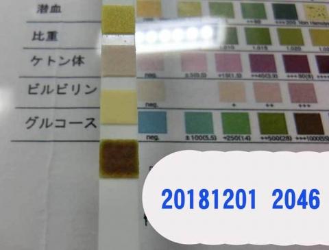 20181201-2046CIMG3540.jpg