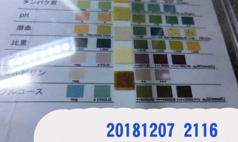 20181207-2116CIMG3567.jpg