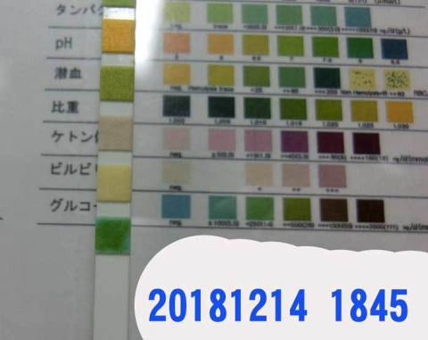 20181214-1845CIMG3650.jpg